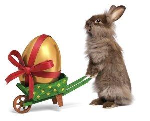 rabbitegg