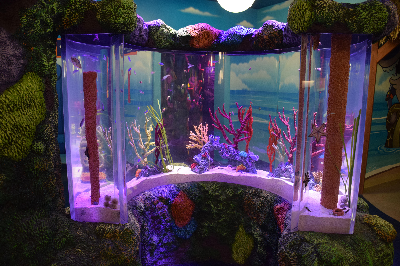 Welcome to SEA LIFE Michigan Aquarium! - Oakland County Blog