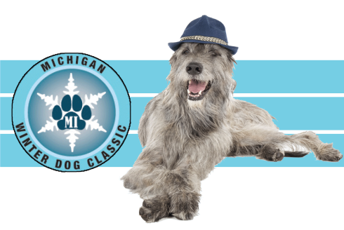 Irish Wolfhound with MWDC Logo