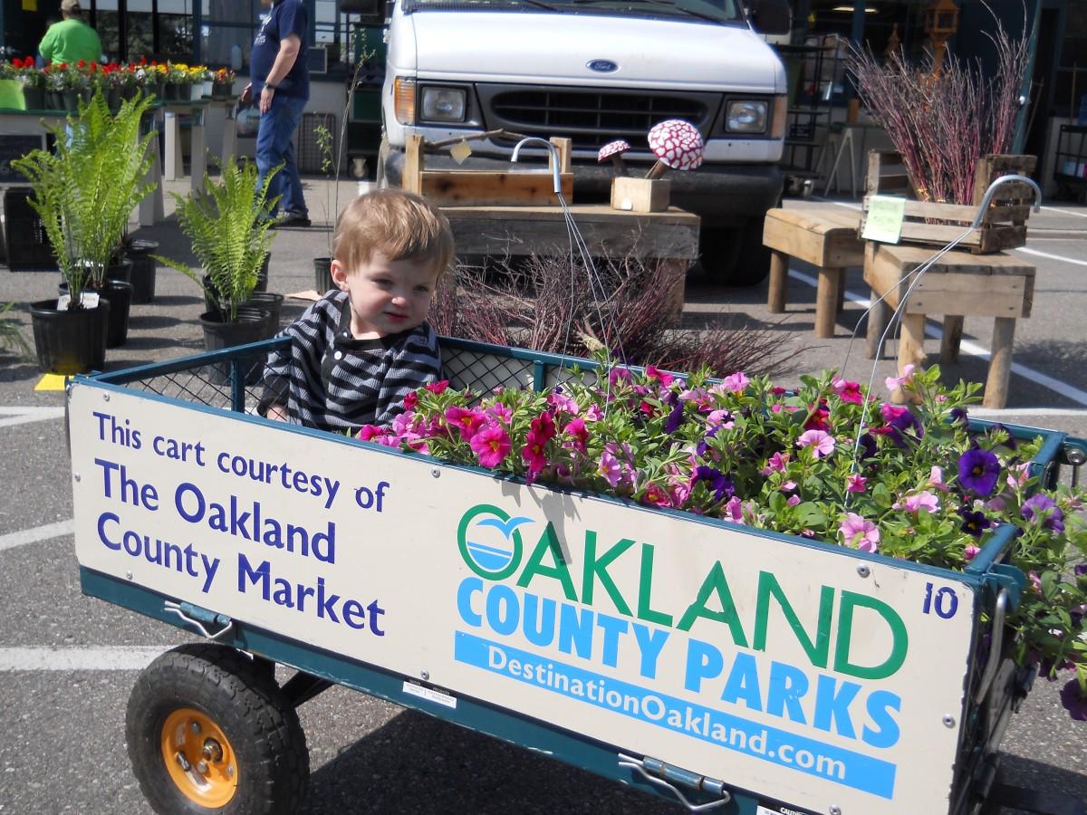 Michigan oakland county franklin - Michigan Oakland County Franklin 89