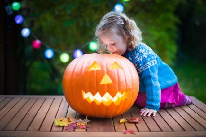 Little girl carving pumpkin at Halloween.
