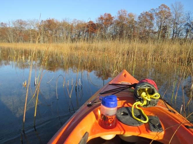 Kayaking along the shoreline of Crooked Lake.