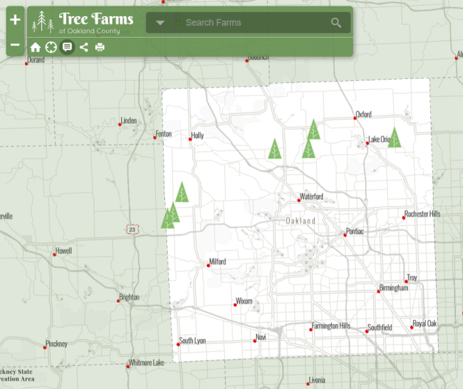 tree-farm-capture