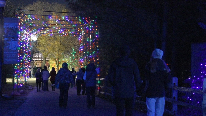 Detroit Zoo Christmas Lights.The Detroit Zoo S Wild Lights Oakland County Blog