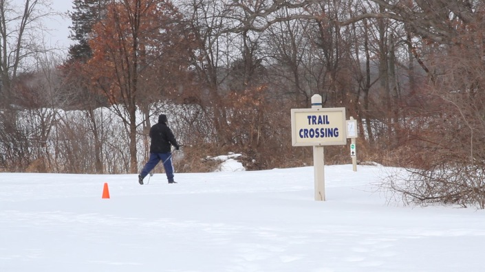 Cross Country Skier in Oakland County Park.