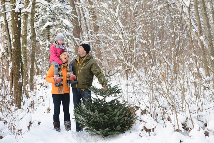 Family with Christmas tree in forest