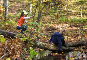 Two children explore the woods. One points across the way while the other sits on a log watching.