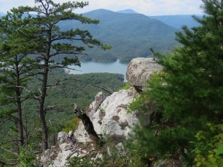 A view of a forest and lake below taken from the Blue Ridge Mountains.