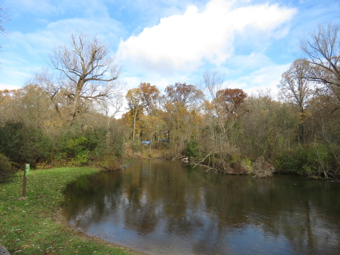 The Huron River bends peacefully through a wooded area at Kensington Metropark underneath a blue sky with streaky white clouds. Tall trees beyond the river have lost most of their leaves.