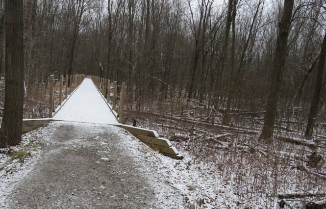 A boardwalk through the woods that is covered with a light layer of snow.