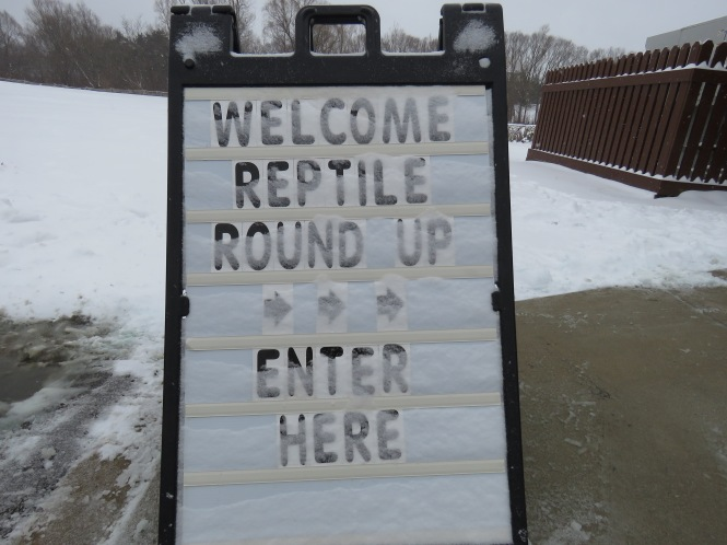 A snow covered sign that reads: Welcome Reptile Round Up >>> Enter Here