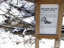 skunk sign winter
