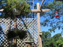 arbor with bird box