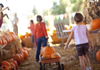 Little Girls Pulling Their Pumpkins In A Wagon