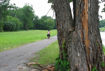 Lightning strike on erie canal trail