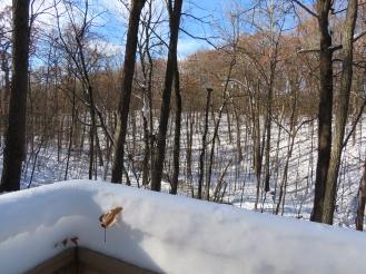 ravine overlook A