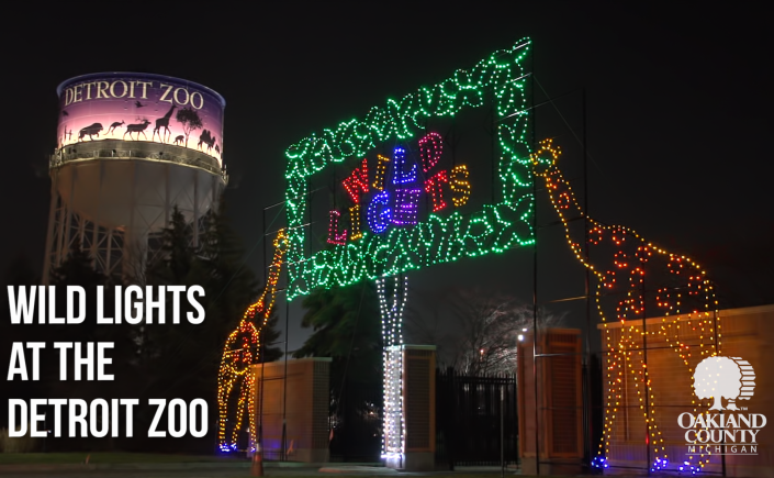 Brighten Up Your Holiday Season With Detroit Zoo S Wild