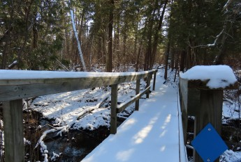 entrance bridge track free